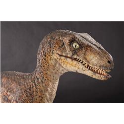 Full-scale Velociraptor maquette from Jurassic Park