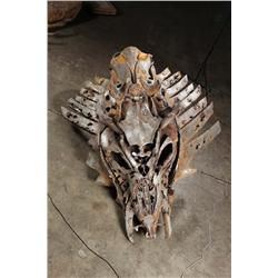 """""""Tomb of the Twelve"""" head (facing up) from Transformers: Revenge of the Fallen"""