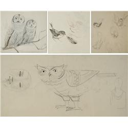 Paul Riba (1912-1977) A Group of Four Bird Studies, Graphite on Paper