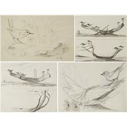Paul Riba (1912-1977) A Group of Four Bird on Driftwood Studies, Graphite on Paper
