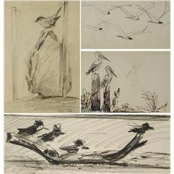 Paul Riba (1912-1977) A Group of Four Bird and Still Life Studies, Three are Graphite on paper and O