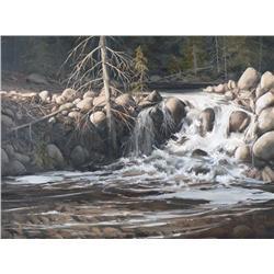 Harold Lloyd Lyon Canadian [b. 1930]BY A WATERFALL; 1976oil on canvas18 x 24 in. (45.7 x 61 cm)signe