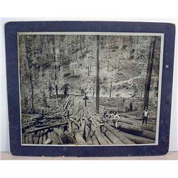 LARGE MOUNTED PHOTO OF LOGGERS AT WORK - Approx. 9