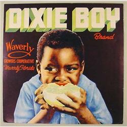 "C. 1930'S BLACK AMERICANA ""DIXIE BOY"" FRUIT LABEL"