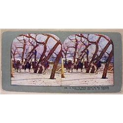 ANTIQUE COWBOY HANGING / LYNCHING STEREOVIEW CARD