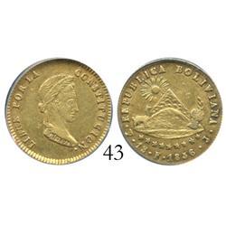 Potosi, Bolivia,1 scudo,1856FJ, encapsulated ANACS AU-50.