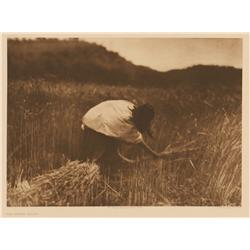 Edward S. Curtis, photogravure, The Apache Reaper. Plate 8