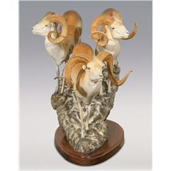 "James Stafford, bronze, 1980, 22 1/2"" x 31"" x 19"", Ovis Ammon Poli"