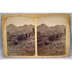 LARGE ANTIQUE PHOTO STEREOVIEW CARD OF MINERS TREN