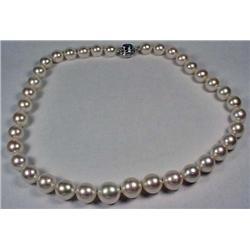 Single Strand South Sea Cultured Pearl Necklace W/