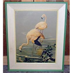 Vintage Flamingo Print By Roger Tory Peterson - Fr