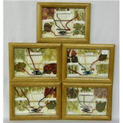 5 Framed Navajo Small Dye Charts by Rose Washburn