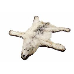 Wolf Rug, Full Mount with Head and Claws mostly white, overall condition good.mostly white, overall