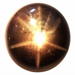 15.18ct Opaque Oval Cabochon Black Star Sapphire  (GEM-23251)