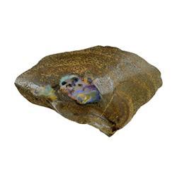 465ct Rare Australian Boulder Opal (GEM-25310)
