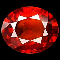 .5ct Lovely Oval Red Sapphire (GMR-1030)