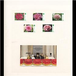 Jersey Mint Margin Single Album Page 6 Pcs (STM-0670)