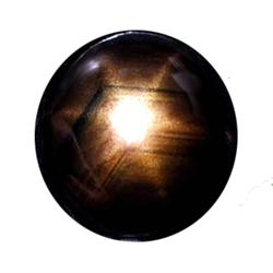 0.67ct Natural Black Star Sapphire 6 Ray Cabochon (GEM-22567C)
