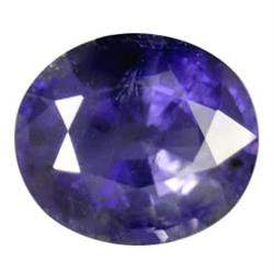 9.30ct Massive Natural Purple Blue Iolite  (GEM-23238)