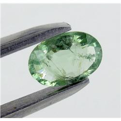 1.02ct Fancy Paraiba Tourmaline Oval Cut (GEM-26258)