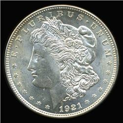 1921 Morgan Dollar GEM Unc Scarce Variety (COI-6280)
