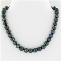 Rare Black Saltwater Pearl Necklace (JEW-250G)