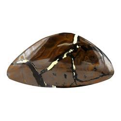 55ct Rare Australian Boulder Opal (GEM-23077)