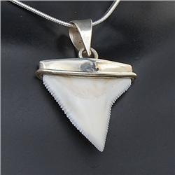 Shark Ivory & Sterling Necklace Earrings (JEW-195)