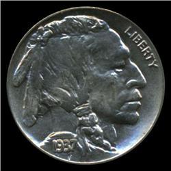 1937 Buffalo 5c Nickel BU Gem+ Coin (COI-1464)