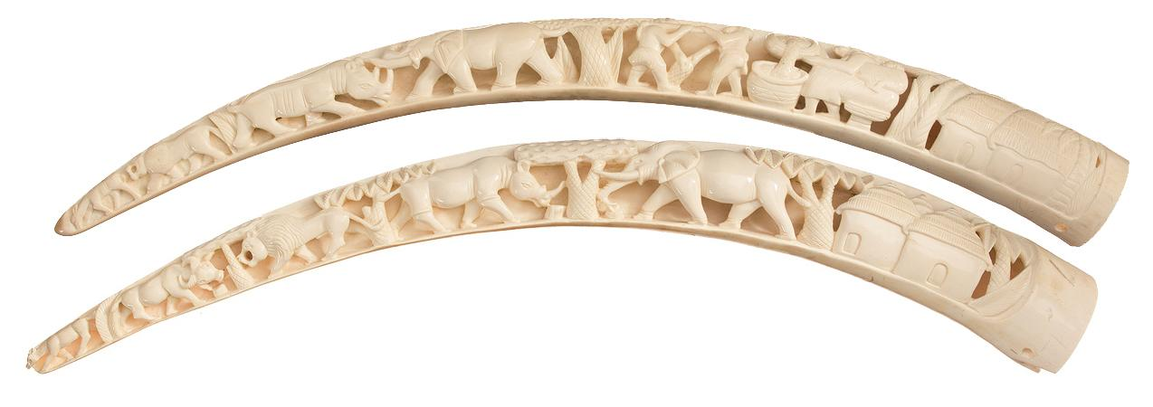 Excellent Pair of Attractively Carved Ivory Tusks