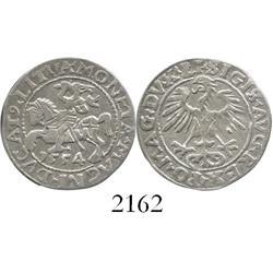 Lithuania, half groschen (pusgrasis), Sigismund II, 1554, rare date.