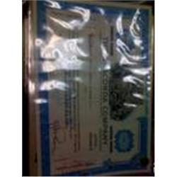 "Rare Old ""Anaconda"" Stock Certificate"