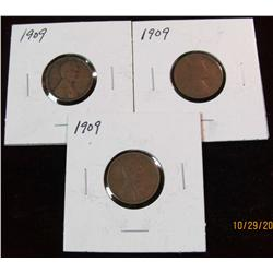 17. (3) 1909 U.S. Lincoln Cents. G-F.