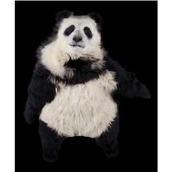 Panda suit from Knorr and Wanchai Ferry commercials