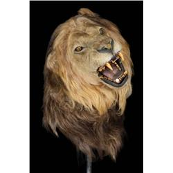 Screen-used articulated lion head puppet from The Ghost and the Darkness and Big Fish