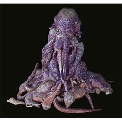 Screen-used purple Thermian from Galaxy Quest