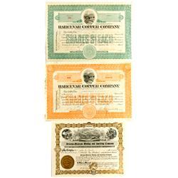 AZ - 1905.1909 - Arizona Mining Stocks :