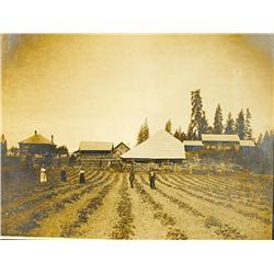 Rathdrum,ID - Kootenai County - 1908 - Agricultural Center Photograph :