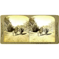 Santa Fe,NM - 1909 - Indian With Packed Burro, Stereoview :