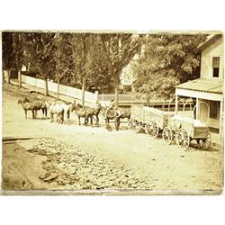Dalles,OR - Wasco County - c1885 - Wagons and Eight Horse Team Photograph :