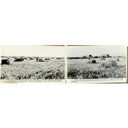 Pahvant Valley,UT - Millard County - No Date - Utah Photo Album of Pahvant Valley :