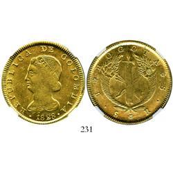 Bogota, Colombia, 8 escudos, 1828RS, encapsulated NGC AU-55.