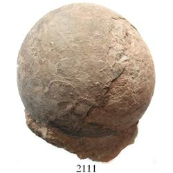 Dinosaur egg (probably Hadrosaur), 100 million years old (Cretaceous period).