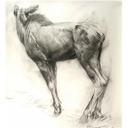 Geordie Millar, large charcoal