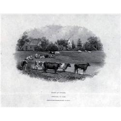 Canada - Bank of Ottawa Proof Vignette of  Dairy Farm Scene Used on 1906-1913 Issues.