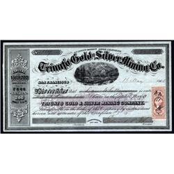 California - Triunfo Gold and Silver Mining Co.