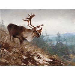 Rungius, Carl - Yukon King-Caribou (1907) (1869-1959)