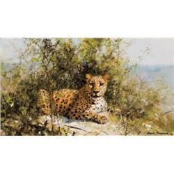Shepherd, David - Leopard (b. 1931)