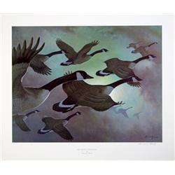 """Lot of 10 prints consisting of: A) Matted  print of """"California Snow Geese in Flight"""" by  Peter Scot"""