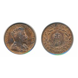 1904-H. PCGS graded Mint State-63. Red-Brown. 40% red luster. Good 'eye appeal'.